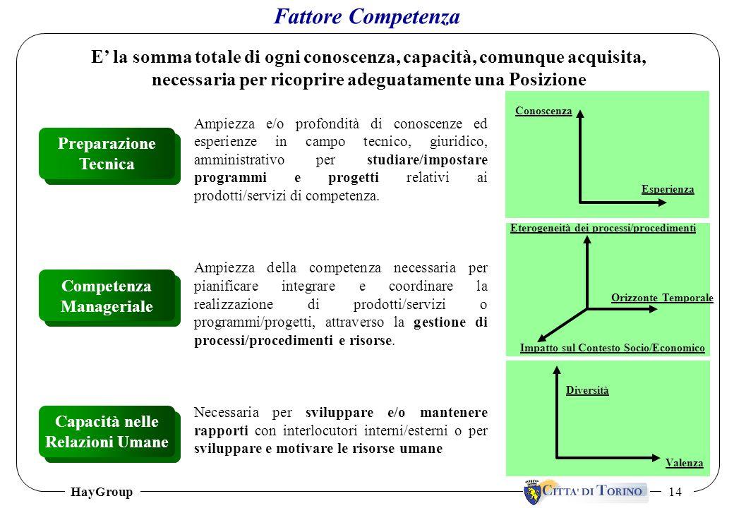 HayGroup 14 E la somma totale di ogni conoscenza, capacità, comunque acquisita, necessaria per ricoprire adeguatamente una Posizione Fattore Competenz