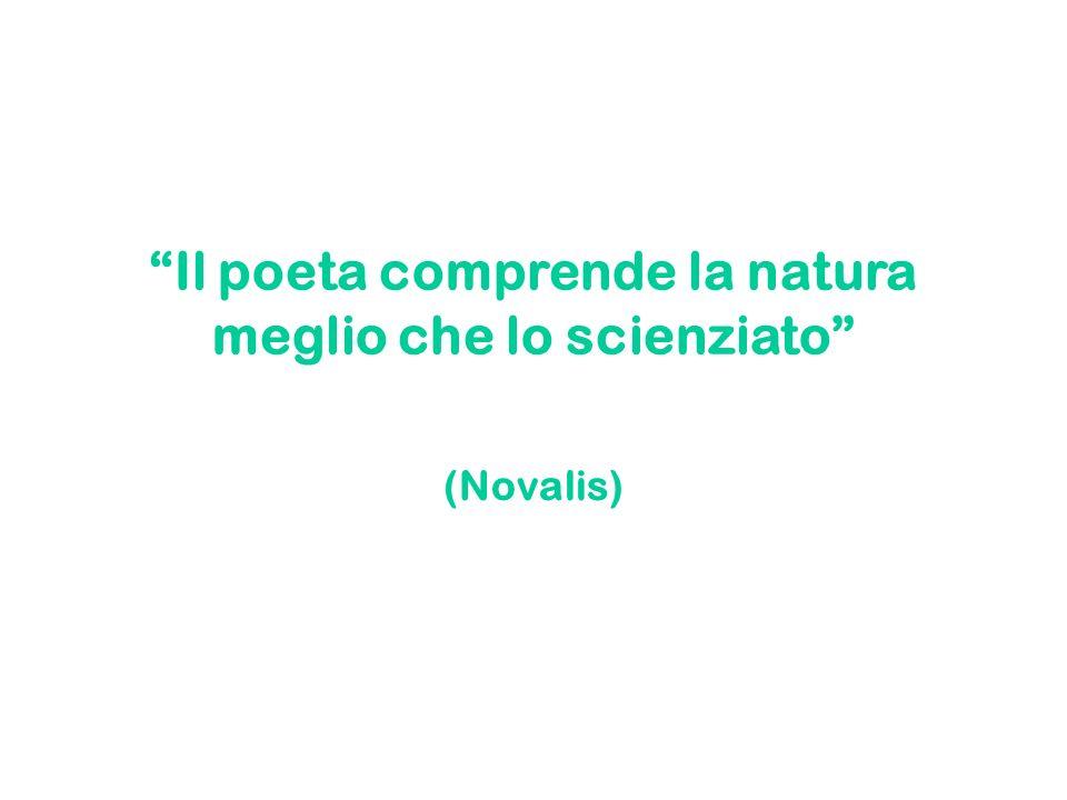 Il poeta comprende la natura meglio che lo scienziato (Novalis)