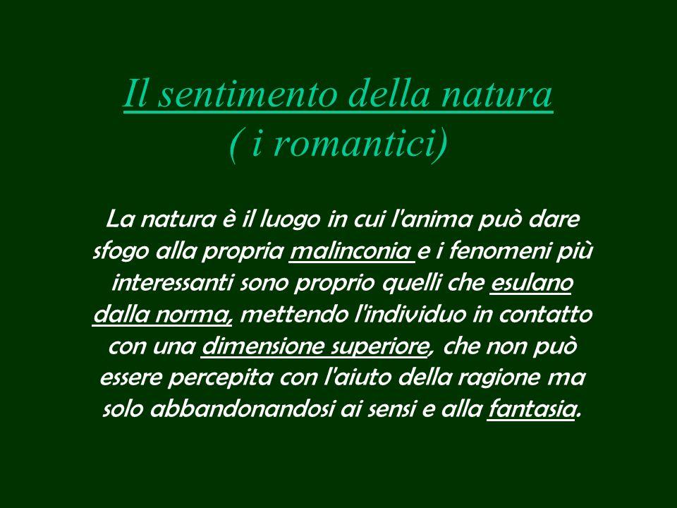 Il sentimento della natura ( i romantici) La natura è il luogo in cui l'anima può dare sfogo alla propria malinconia e i fenomeni più interessanti son