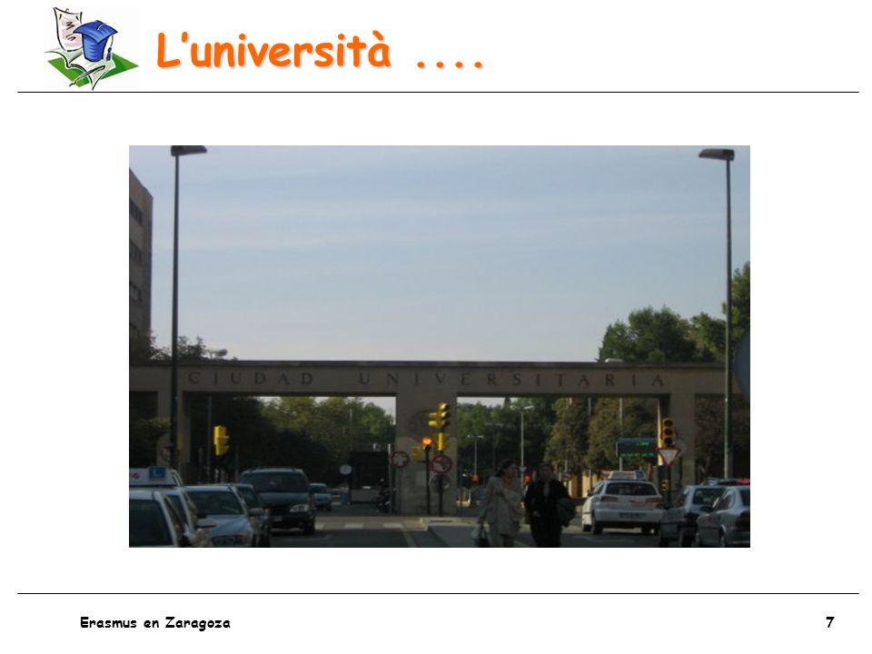 8 Erasmus en Zaragoza Gli esami....