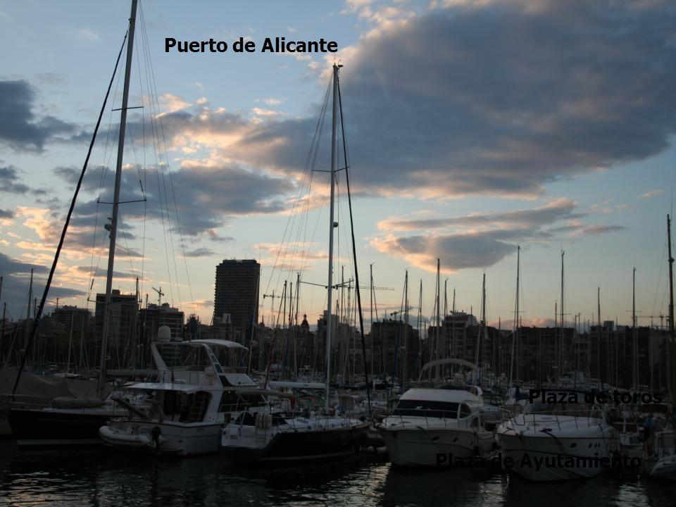 Explanada Arena Plaza de toros Plaza de Ayutamiento Puerto de Alicante
