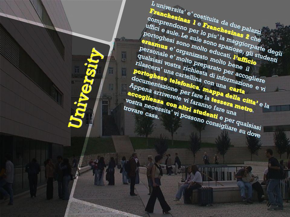 University University L universita e costituita da due palazzi Franchesinas 1 e Franchesinas 2 che comprendono per lo piu la maggiorparte degli uffici e aule.