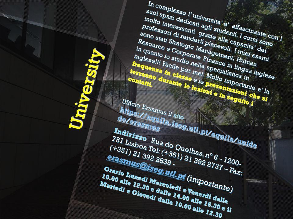 University University In complesso l universita e affascinante con I suoi spazi dedicati agli studenti.