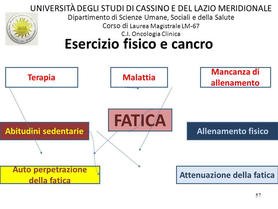 57 Esercizio fisico e cancro FATICA Auto perpetrazione della fatica Attenuazione della fatica Abitudini sedentarieAllenamento fisico Mancanza di allen
