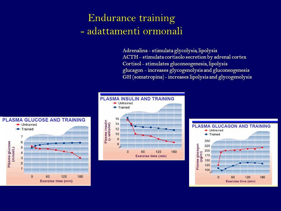 Endurance training - adattamenti ormonali Adrenalina - stimulata glycolysis, lipolysis ACTH - stimulata cortisolo secretion by adrenal cortex Cortisol