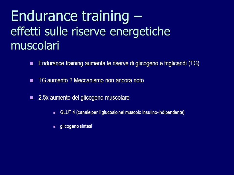 Endurance training – effetti sulle riserve energetiche muscolari Endurance training aumenta le riserve di glicogeno e trigliceridi (TG) Endurance trai
