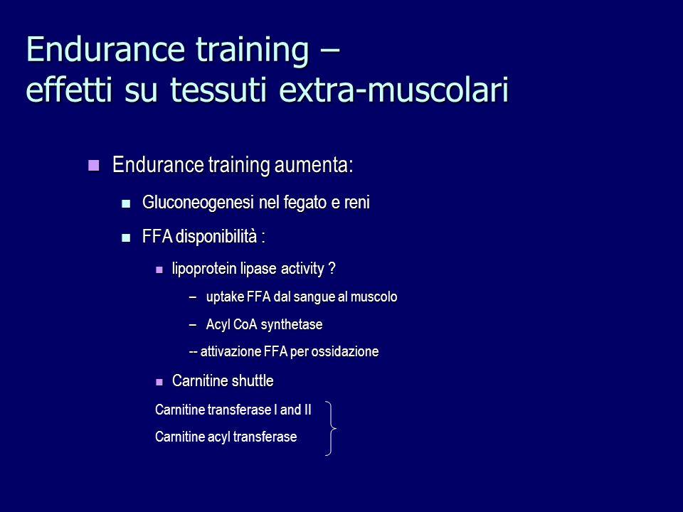 Endurance training – effetti su tessuti extra-muscolari Endurance training aumenta: Endurance training aumenta: Gluconeogenesi nel fegato e reni Gluco