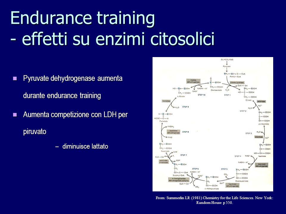 Pyruvate dehydrogenase aumenta durante endurance training Pyruvate dehydrogenase aumenta durante endurance training Aumenta competizione con LDH per p