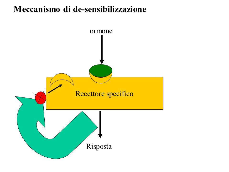 Recettore specifico ormone Risposta Meccanismo di de-sensibilizzazione