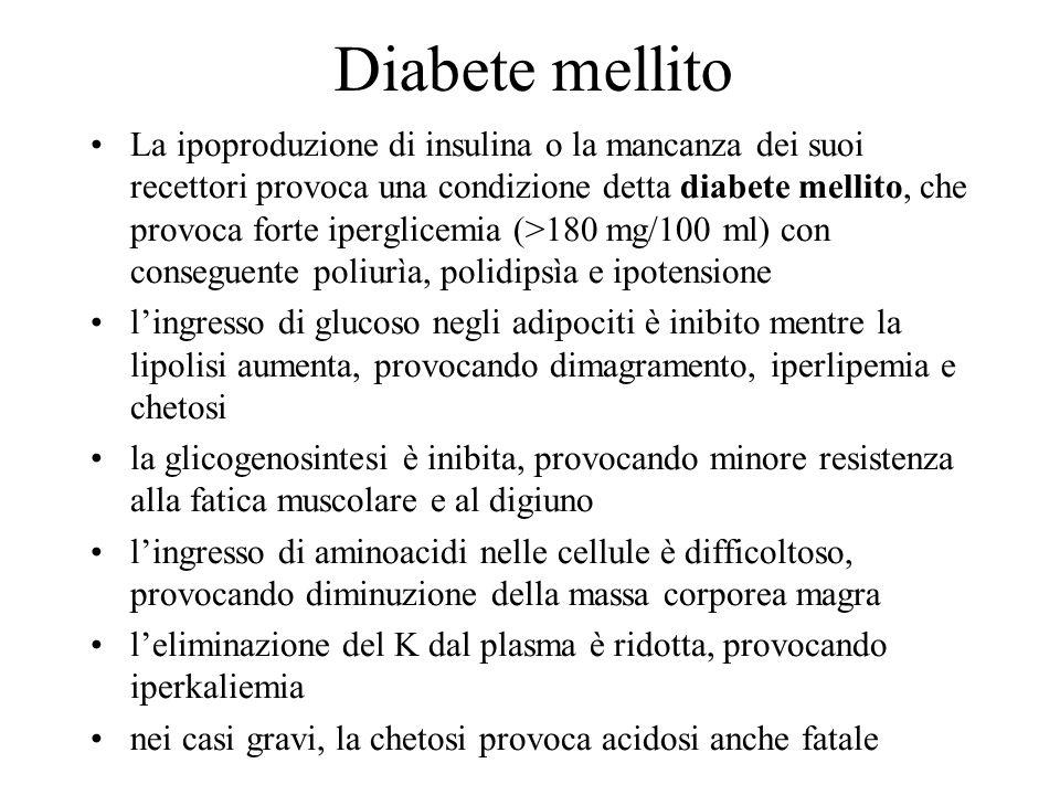Diabete mellito La ipoproduzione di insulina o la mancanza dei suoi recettori provoca una condizione detta diabete mellito, che provoca forte iperglic