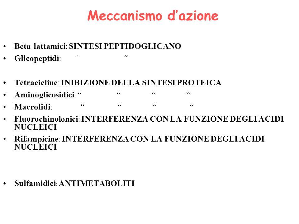 Meccanismo dazione Beta-lattamici: SINTESI PEPTIDOGLICANO Glicopeptidi: Tetracicline: INIBIZIONE DELLA SINTESI PROTEICA Aminoglicosidici: Macrolidi: F
