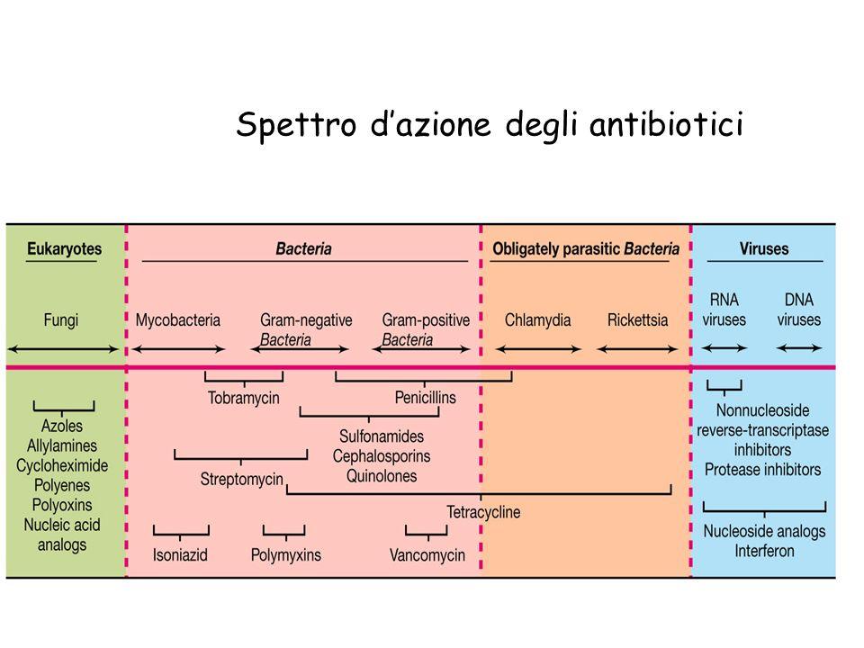 Spettro dazione degli antibiotici