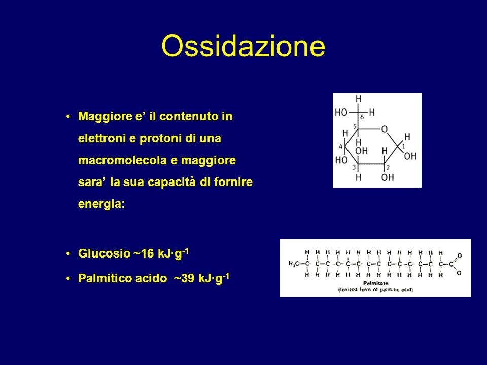 Enzimi che usano NAD O NADP come cofattori Reazioni di ossido-riduzione