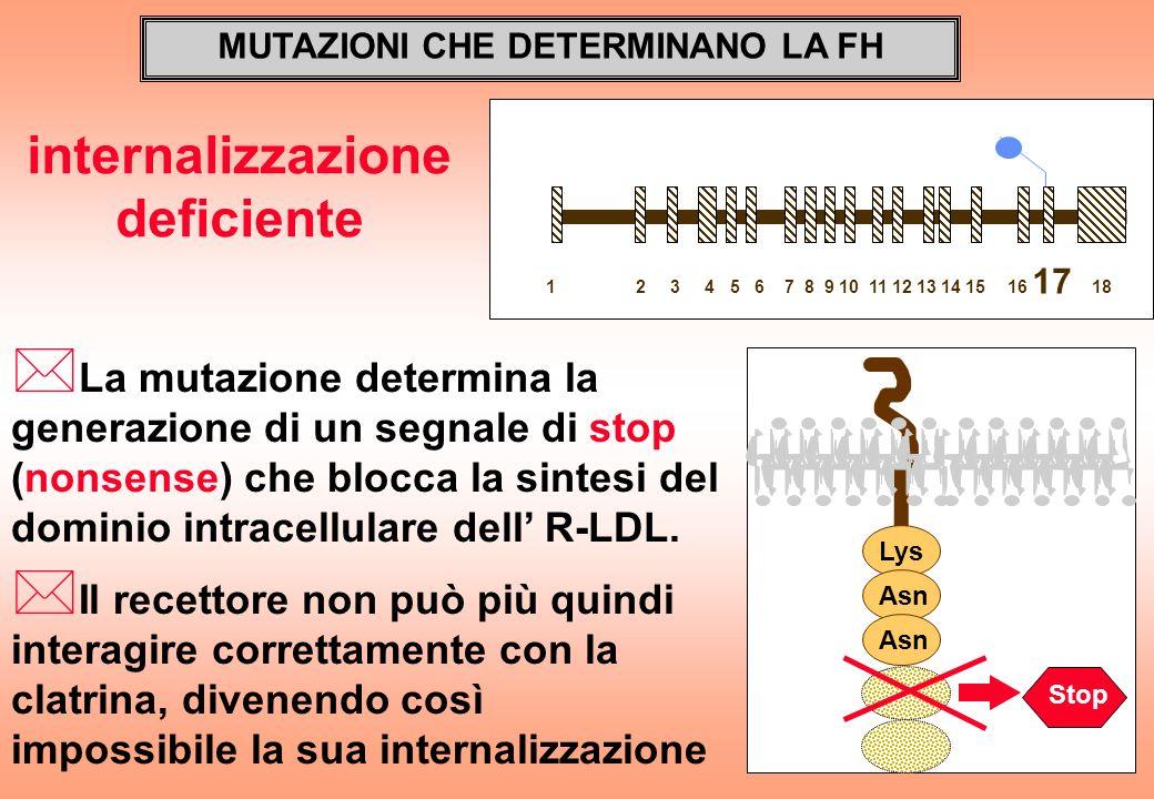 MUTAZIONI CHE DETERMINANO LA FH * La mutazione determina la generazione di un segnale di stop (nonsense) che blocca la sintesi del dominio intracellul
