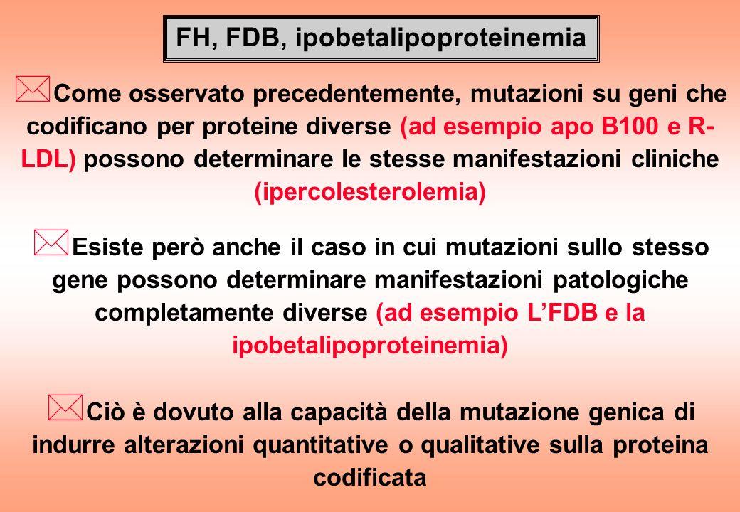 FH, FDB, ipobetalipoproteinemia * Come osservato precedentemente, mutazioni su geni che codificano per proteine diverse (ad esempio apo B100 e R- LDL)
