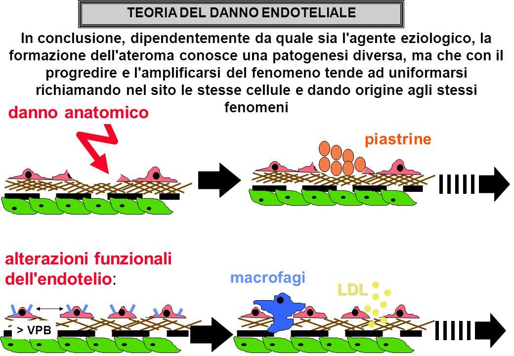 In conclusione, dipendentemente da quale sia l'agente eziologico, la formazione dell'ateroma conosce una patogenesi diversa, ma che con il progredire