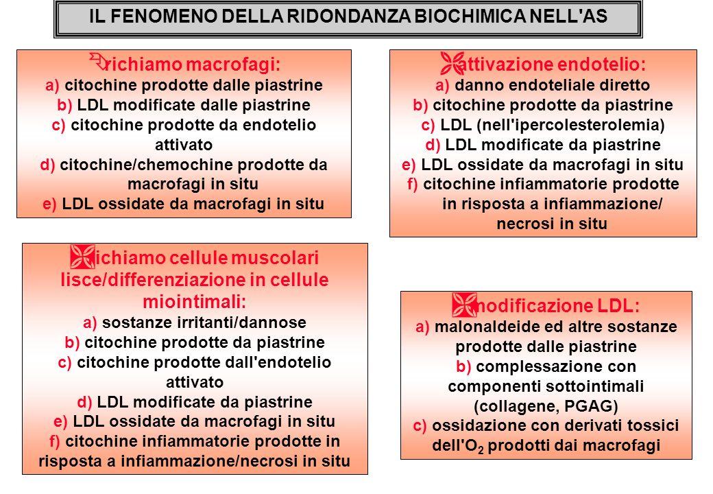 IL FENOMENO DELLA RIDONDANZA BIOCHIMICA NELL'AS Ê richiamo macrofagi: a) citochine prodotte dalle piastrine b) LDL modificate dalle piastrine c) citoc