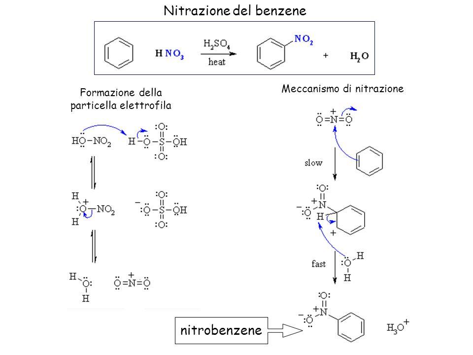 Nitrazione del benzene Formazione della particella elettrofila Meccanismo di nitrazione nitrobenzene