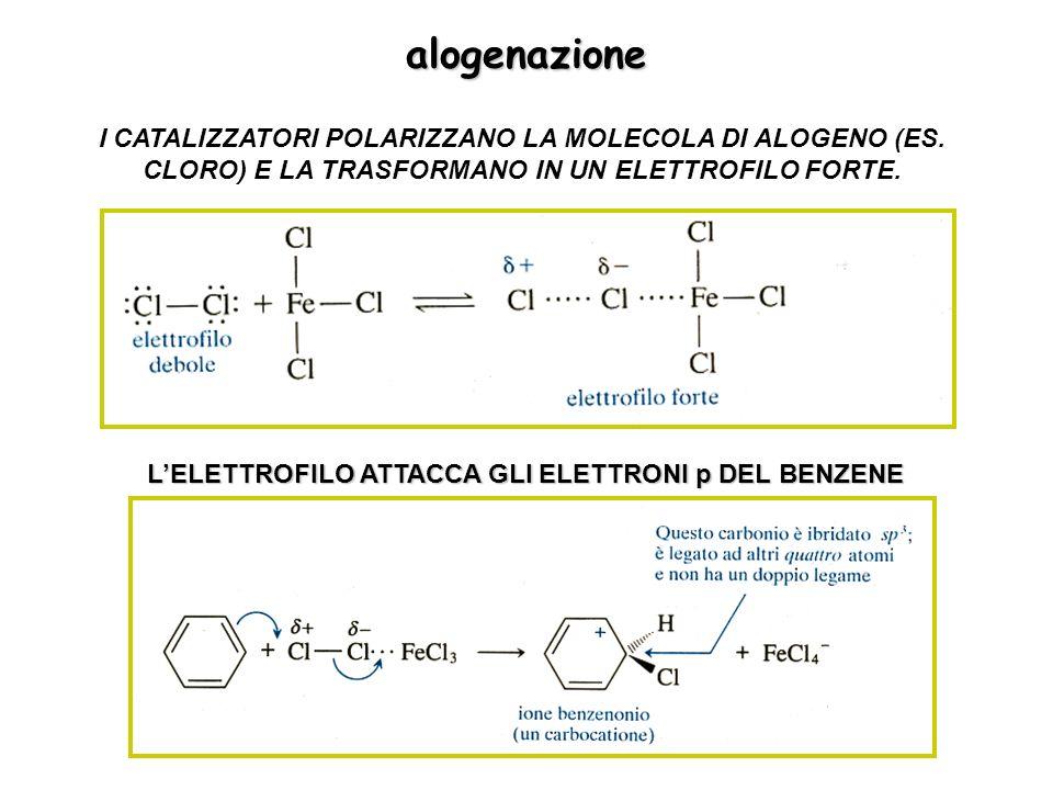 alogenazione I CATALIZZATORI POLARIZZANO LA MOLECOLA DI ALOGENO (ES.