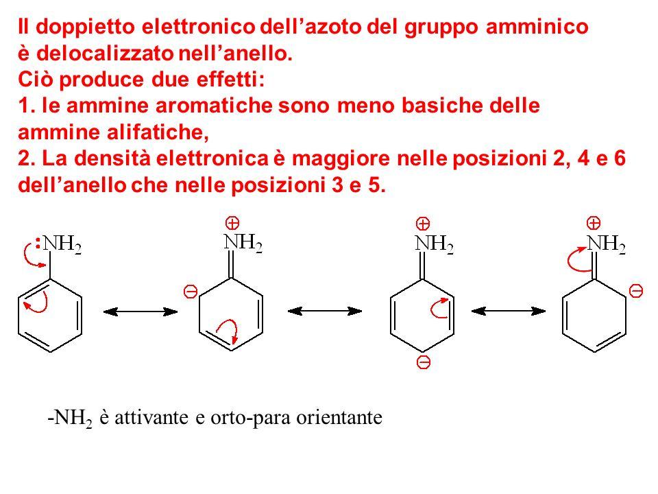 Il doppietto elettronico dellazoto del gruppo amminico è delocalizzato nellanello.