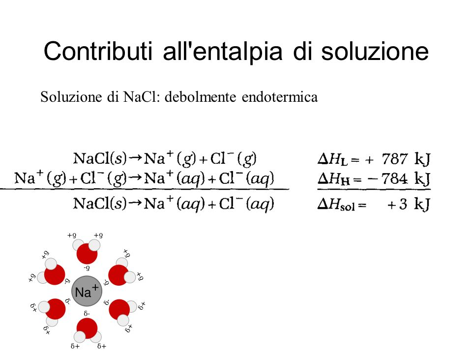 Contributi all'entalpia di soluzione Soluzione di NaCl: debolmente endotermica
