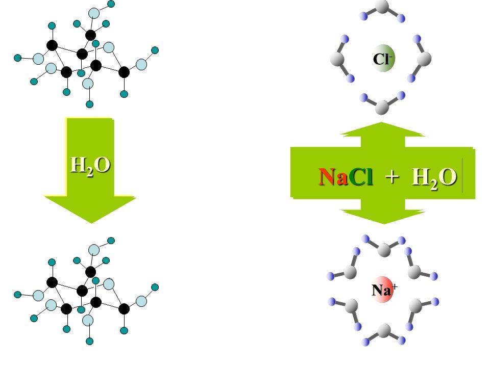 Na + Cl - NaCl + H 2 O H2OH2OH2OH2O