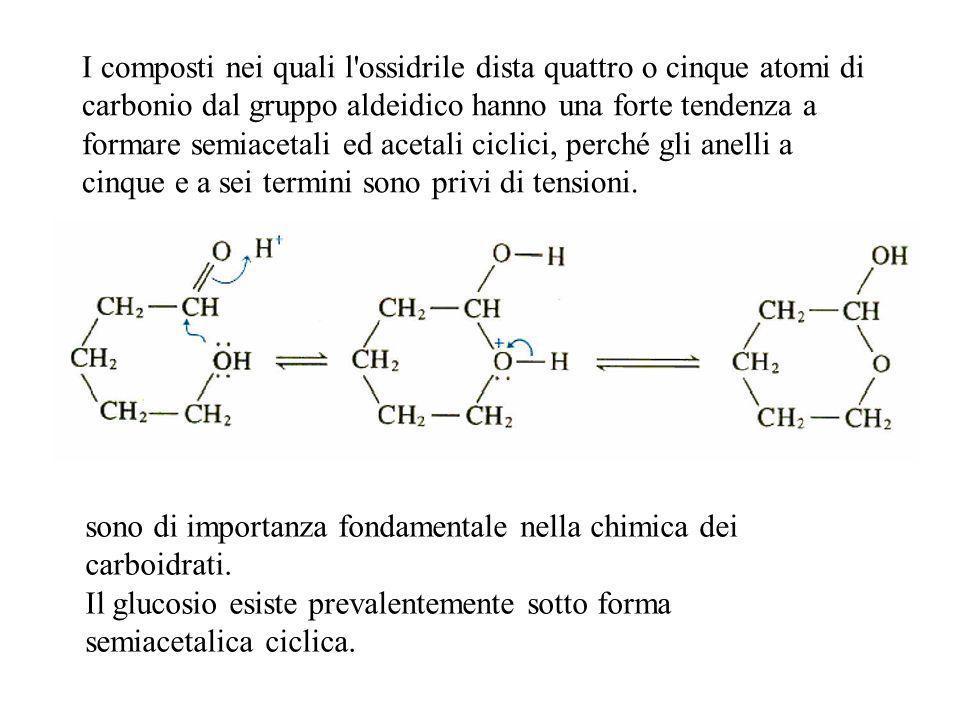 I composti nei quali l'ossidrile dista quattro o cinque atomi di carbonio dal gruppo aldeidico hanno una forte tendenza a formare semiacetali ed aceta