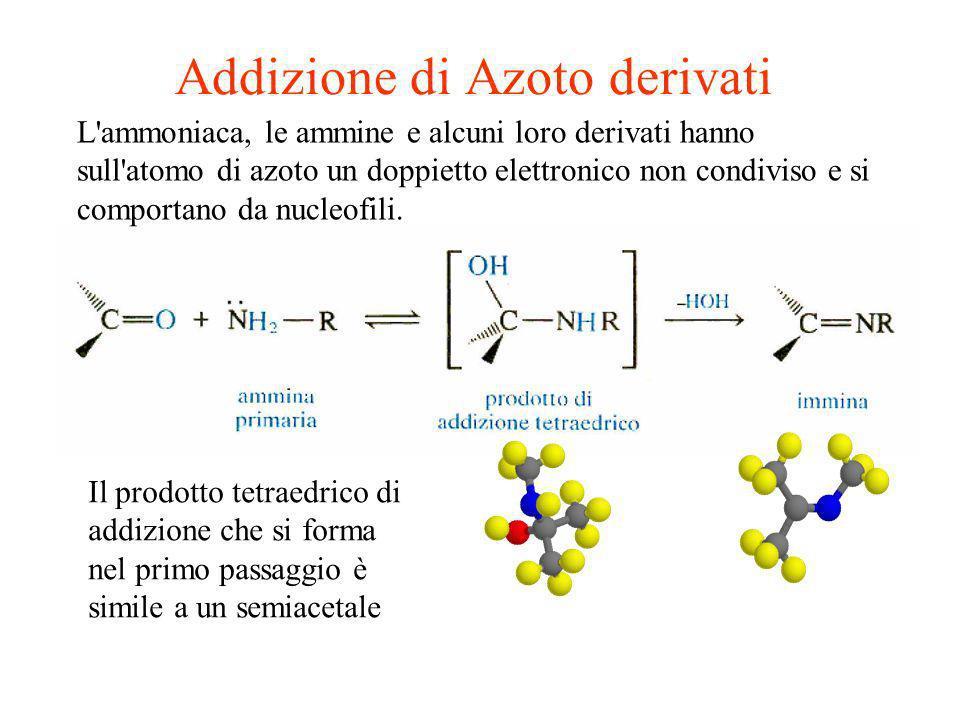 Addizione di Azoto derivati L'ammoniaca, le ammine e alcuni loro derivati hanno sull'atomo di azoto un doppietto elettronico non condiviso e si compor