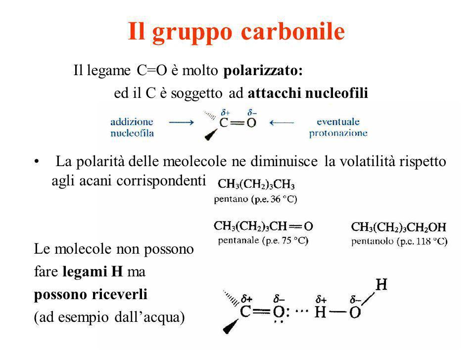 Il gruppo carbonile Il legame C=O è molto polarizzato: ed il C è soggetto ad attacchi nucleofili La polarità delle meolecole ne diminuisce la volatili