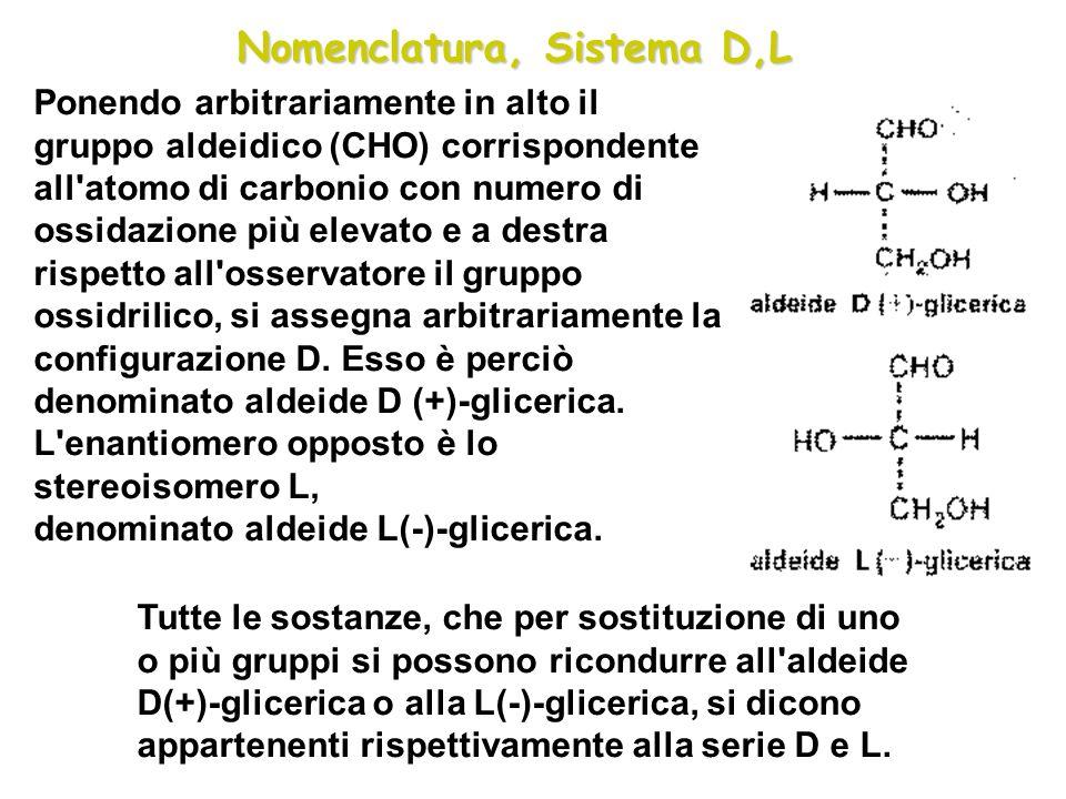 Ponendo arbitrariamente in alto il gruppo aldeidico (CHO) corrispondente all'atomo di carbonio con numero di ossidazione più elevato e a destra rispet