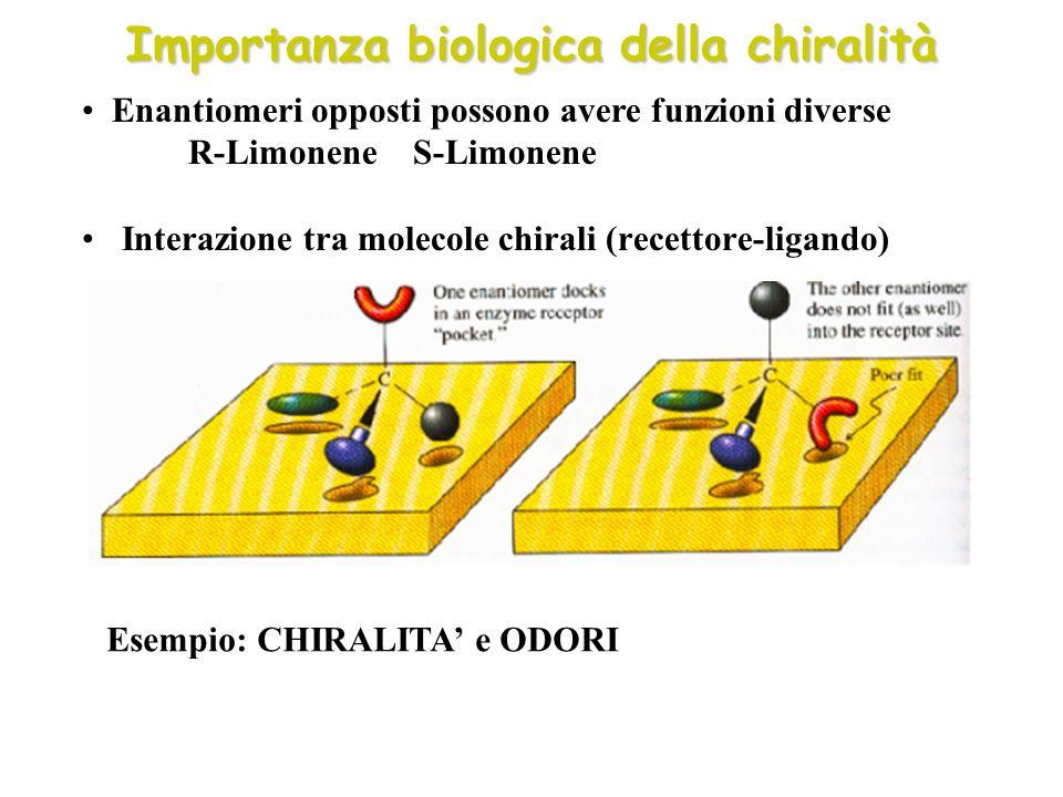 Importanza biologica della chiralità Interazione tra molecole chirali (recettore-ligando) Enantiomeri opposti possono avere funzioni diverse R-Limonen