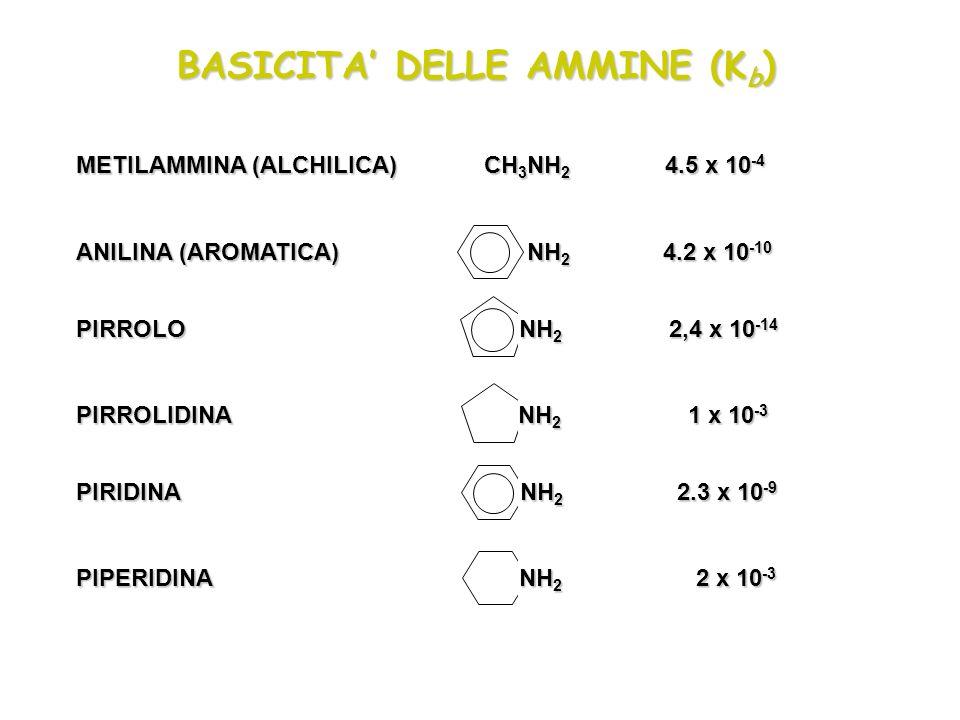 BASICITA DELLE AMMINE (K b ) METILAMMINA (ALCHILICA) CH 3 NH 2 4.5 x 10 -4 ANILINA (AROMATICA) NH 2 4.2 x 10 -10 PIRROLO NH 2 2,4 x 10 -14 PIRROLIDINA