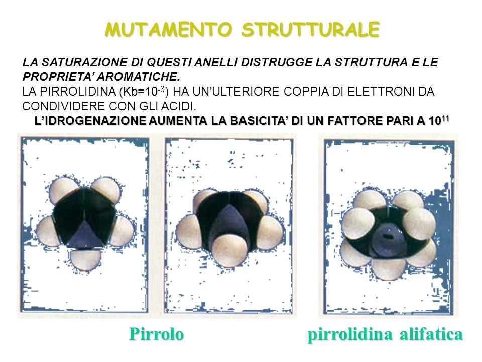 MUTAMENTO STRUTTURALE Pirrolo pirrolidina alifatica LA SATURAZIONE DI QUESTI ANELLI DISTRUGGE LA STRUTTURA E LE PROPRIETA AROMATICHE. LA PIRROLIDINA (