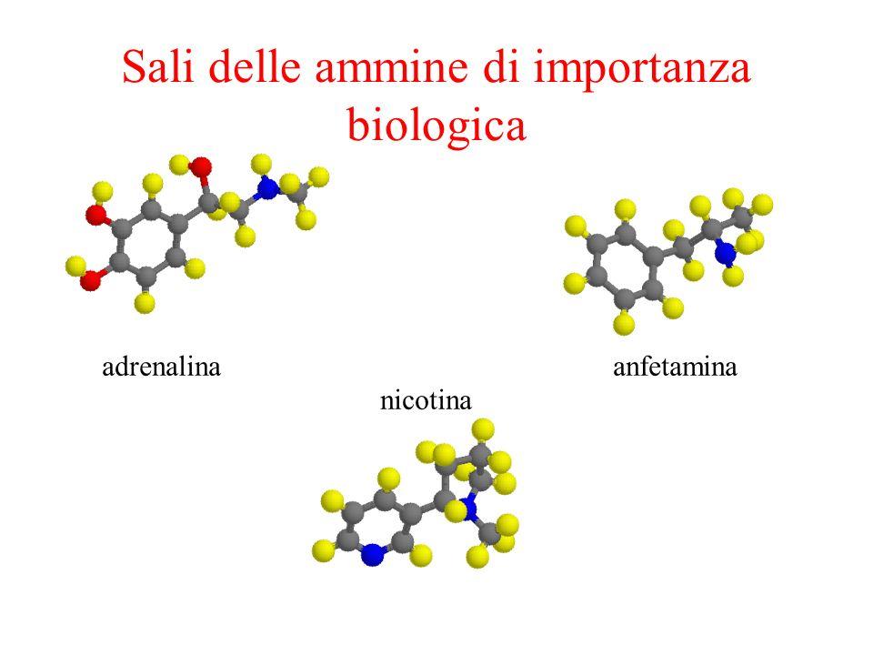Sali delle ammine di importanza biologica nicotina anfetaminaadrenalina