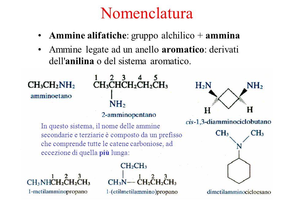 Nomenclatura Ammine alifatiche: gruppo alchilico + ammina Ammine legate ad un anello aromatico: derivati dell anilina o del sistema aromatico.