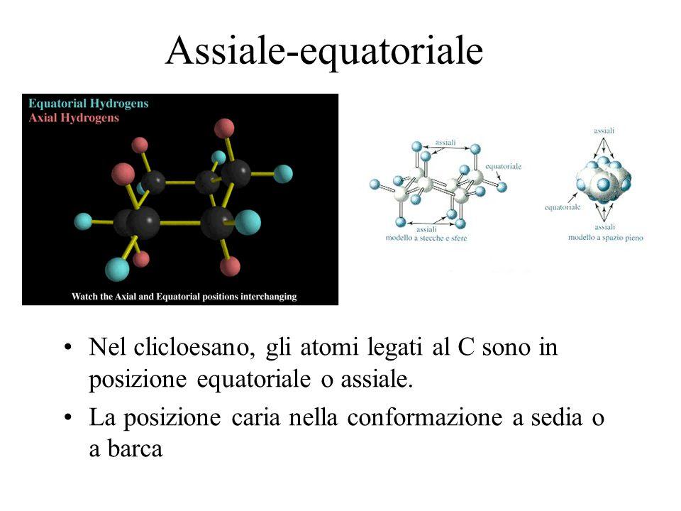 Assiale-equatoriale Nel clicloesano, gli atomi legati al C sono in posizione equatoriale o assiale. La posizione caria nella conformazione a sedia o a