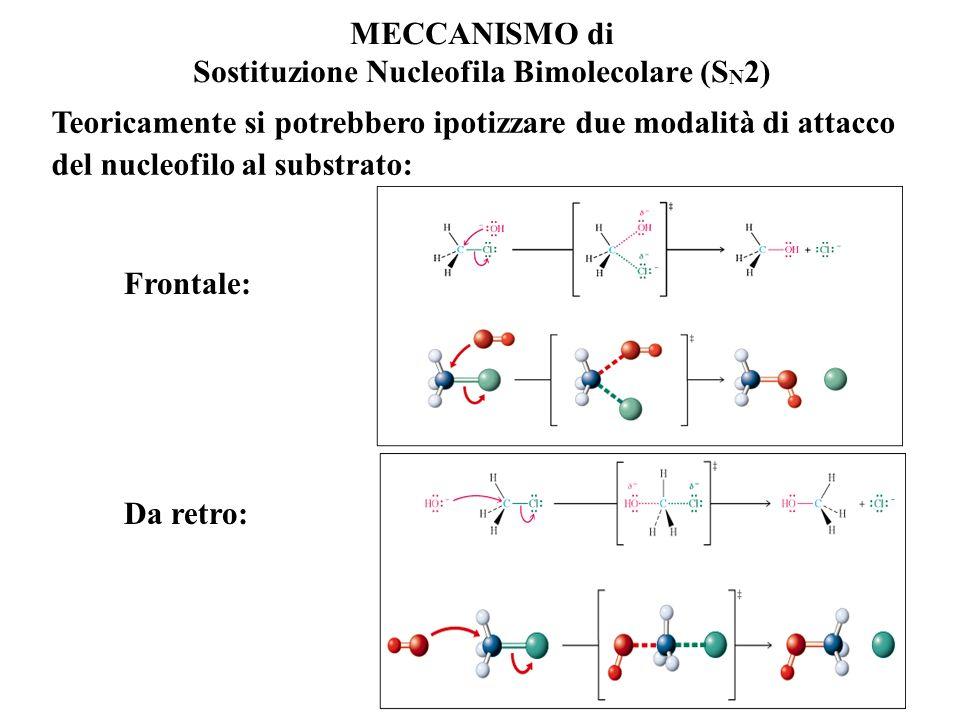 MECCANISMO di Sostituzione Nucleofila Bimolecolare (S N 2) Due molecole (substrato e nucleofilo) partecipano CONTEMPORANEAMENTE al passaggio chiave de