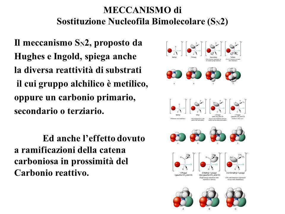 MECCANISMO di Sostituzione Nucleofila Bimolecolare (S N 2) In realtà le reazioni con meccanismo S N 2 sono STEREOSPECIFICHE e quindi lattacco del nucl