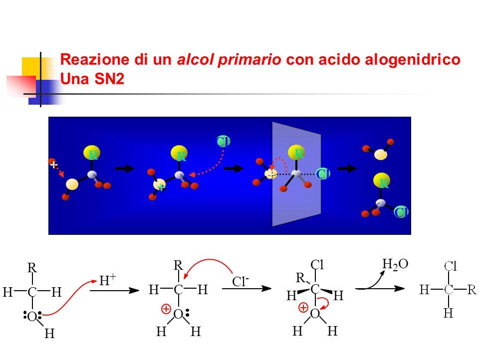 C O H H R H H + C O H H R H H Cl - C O H R H HH Cl H 2 O ++ Cl - R ++ R + Cl R R Reazione di un alcol primario con acido alogenidrico Una SN2