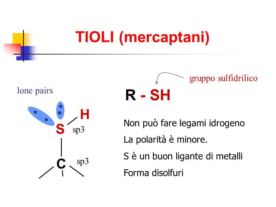 TIOLI (mercaptani) R - SH gruppo sulfidrilico S H C sp3 lone pairs Non può fare legami idrogeno La polarità è minore.