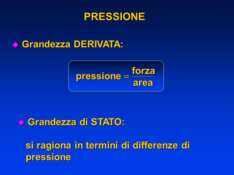 PRESSIONE u Grandezza DERIVATA: pressione forza area u Grandezza di STATO: si ragiona in termini di differenze di si ragiona in termini di differenze