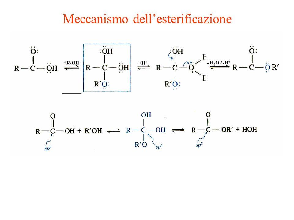 Meccanismo dellesterificazione