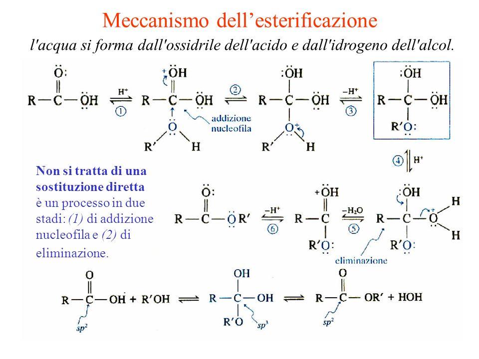 l'acqua si forma dall'ossidrile dell'acido e dall'idrogeno dell'alcol. Non si tratta di una sostituzione diretta è un processo in due stadi: (1) di ad