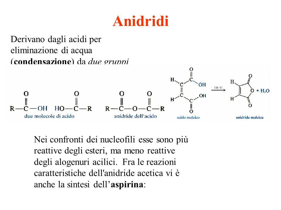 Anidridi Derivano dagli acidi per eliminazione di acqua (condensazione) da due gruppi carbossilici. Nei confronti dei nucleofili esse sono più reattiv