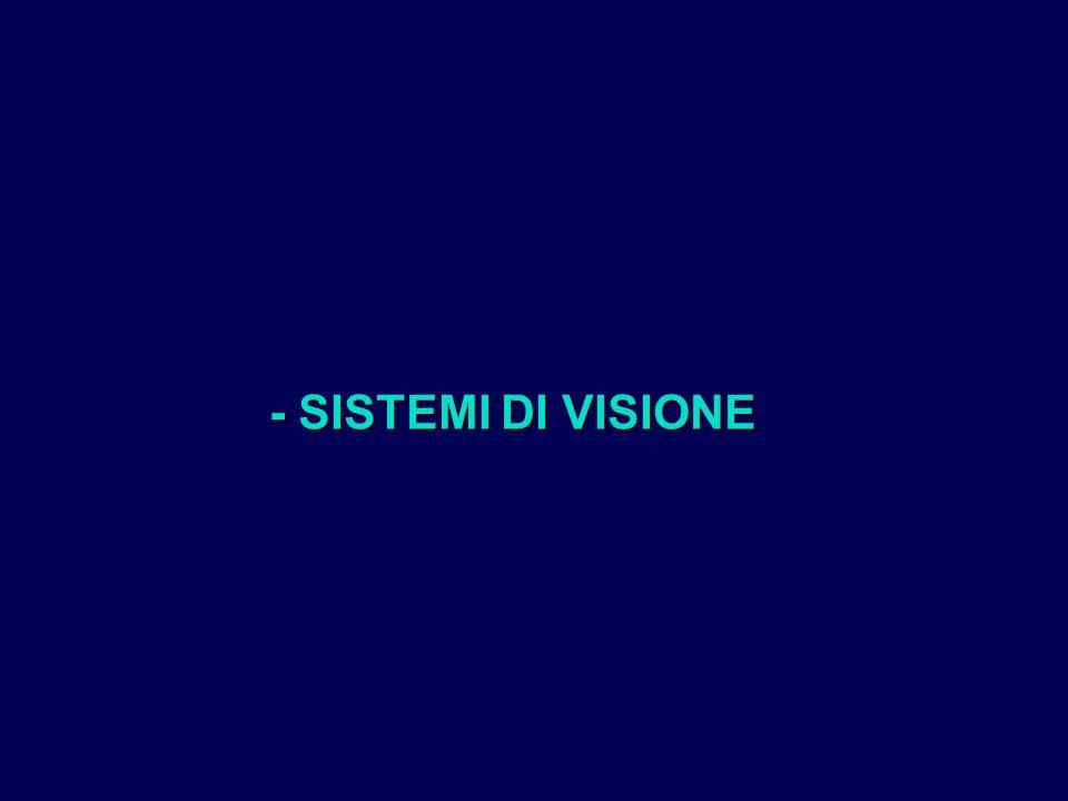 - SISTEMI DI VISIONE