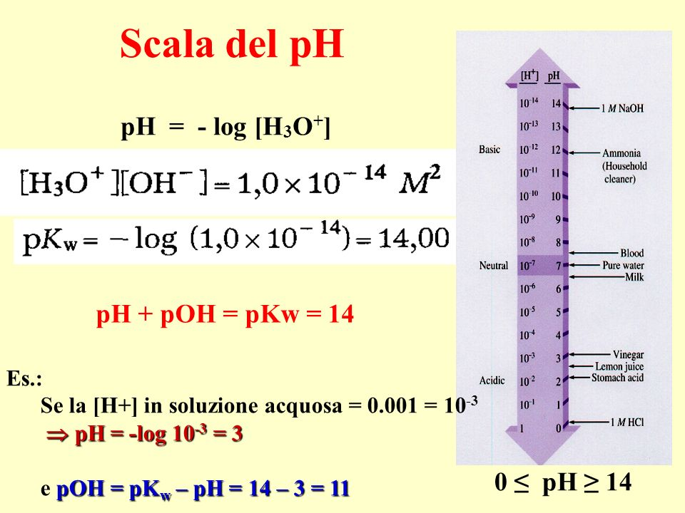 Scala del pH pH = - log [H 3 O + ] pH + pOH = pKw = 14 0 pH 14 Es.: Se la [H+] in soluzione acquosa = 0.001 = 10 -3 pH = -log 10 -3 = 3 pH = -log 10 -