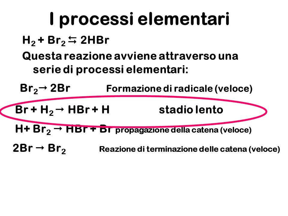 I processi elementari H 2 + Br 2 2HBr Questa reazione avviene attraverso una serie di processi elementari: Br 2 2Br Formazione di radicale (veloce) Br + H 2 HBr + Hstadio lento 2Br Br 2 Reazione di terminazione delle catena (veloce) H+ Br 2 HBr + Br propagazione della catena (veloce)