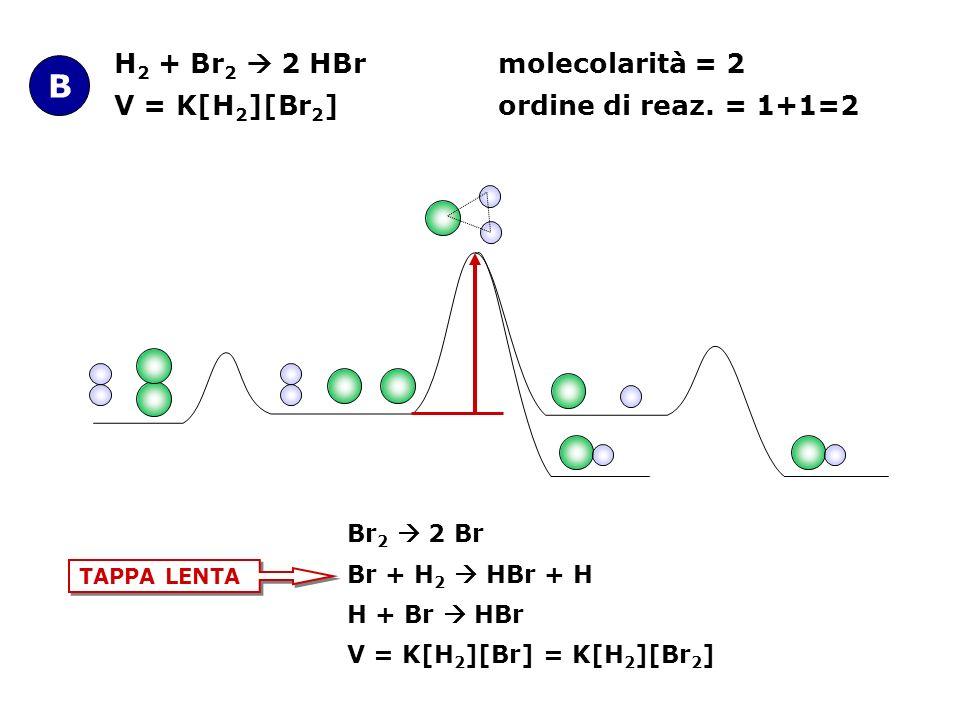 H 2 + Br 2 2 HBrmolecolarità = 2 V = K[H 2 ][Br 2 ] ordine di reaz. = 1+1=2 B Br 2 2 Br Br + H 2 HBr + H H + Br HBr V = K[H 2 ][Br] = K[H 2 ][Br 2 ] T