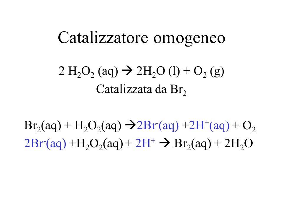 Catalizzatore omogeneo 2 H 2 O 2 (aq) 2H 2 O (l) + O 2 (g) Catalizzata da Br 2 Br 2 (aq) + H 2 O 2 (aq) 2Br - (aq) +2H + (aq) + O 2 2Br - (aq) +H 2 O