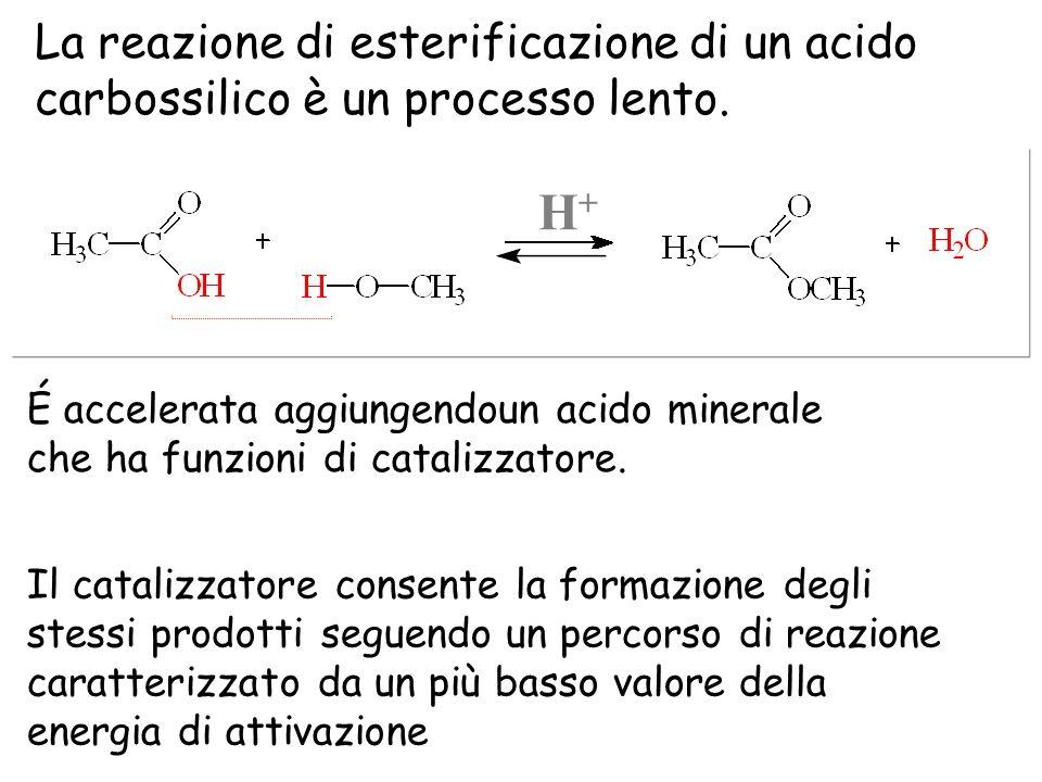 La reazione di esterificazione di un acido carbossilico è un processo lento. É accelerata aggiungendoun acido minerale che ha funzioni di catalizzator
